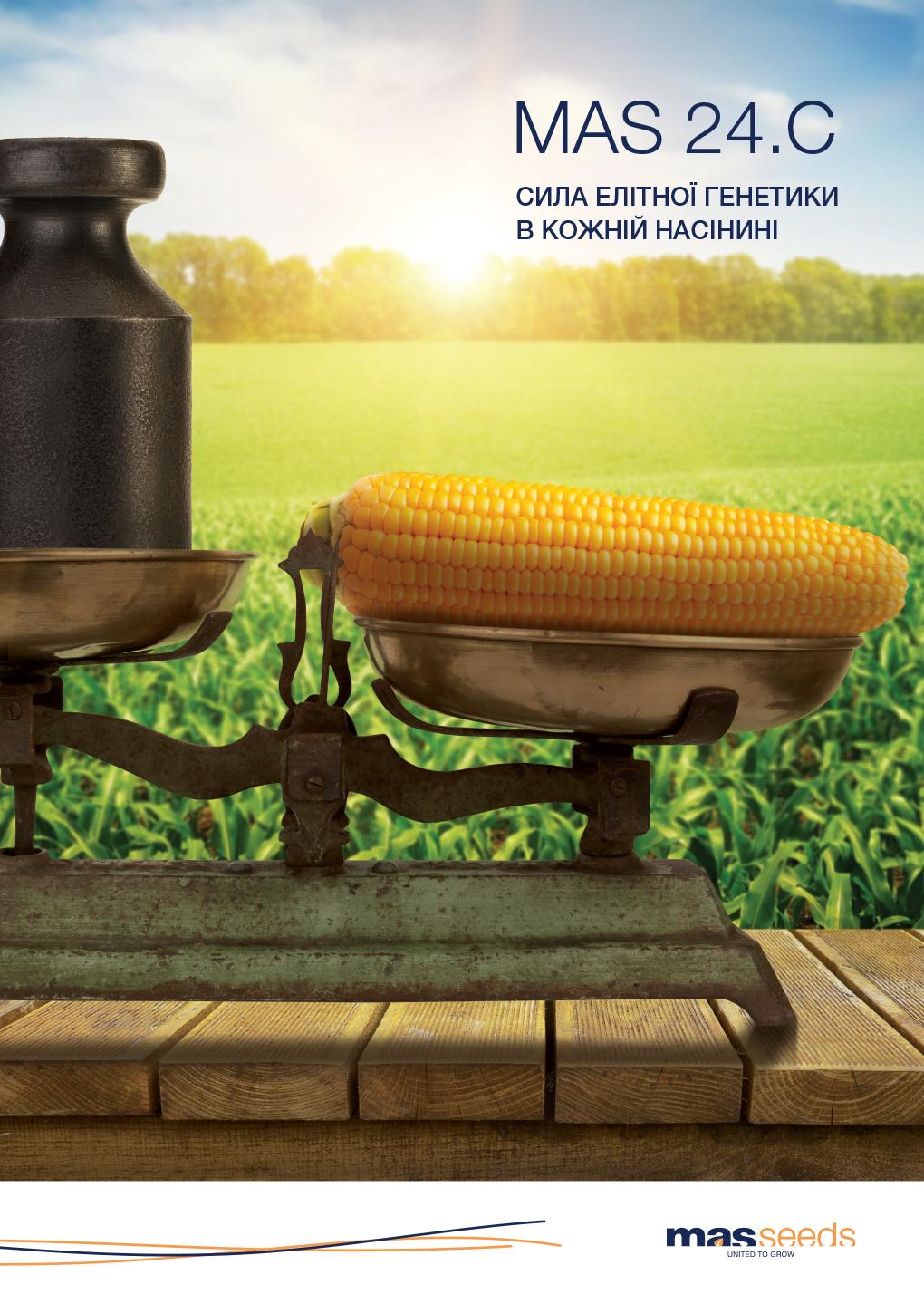 Corn_MAS 24.С_A4