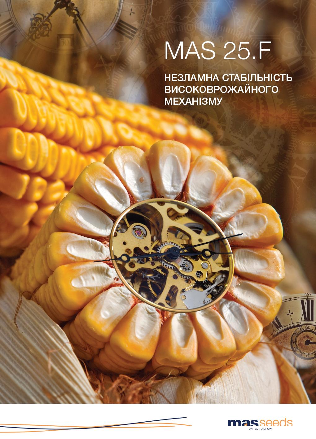 рекламний макет кукуруза
